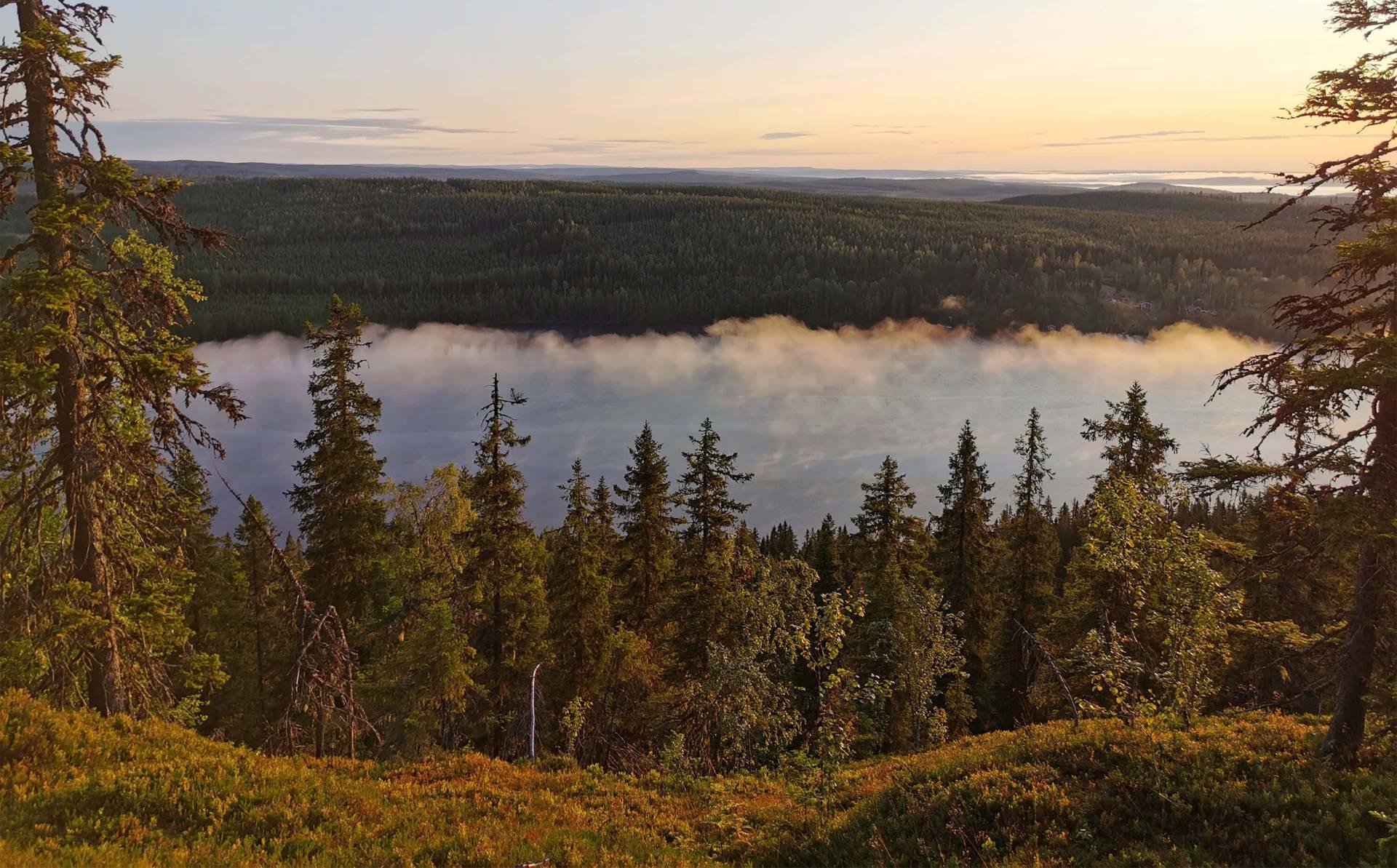 Från Stockholm till storslaget skogslandskap