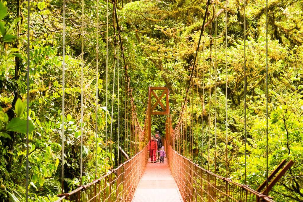 Hängbro i Monteverdes molnregnskog.