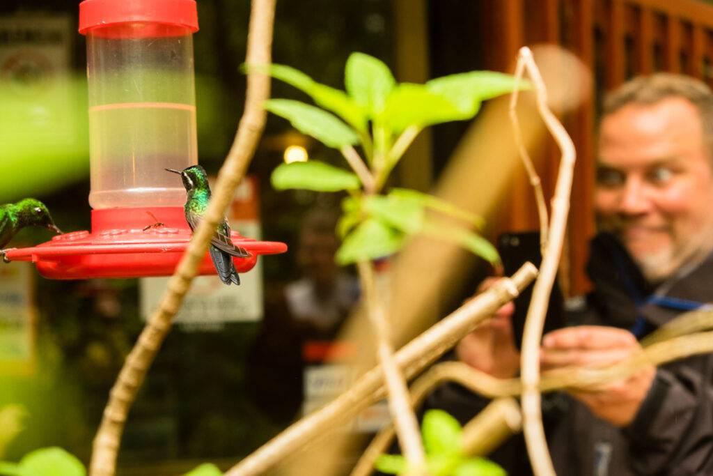 En turist fotograferar kolibrier vid matare utanför Café Colibri.