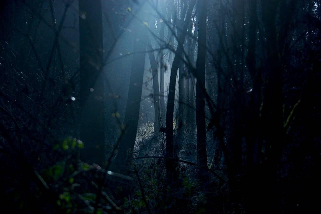 mörkerrädsla fobi
