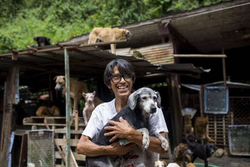 Hon Hoppar över Middagen För Att Mata Venezuelas Hundar