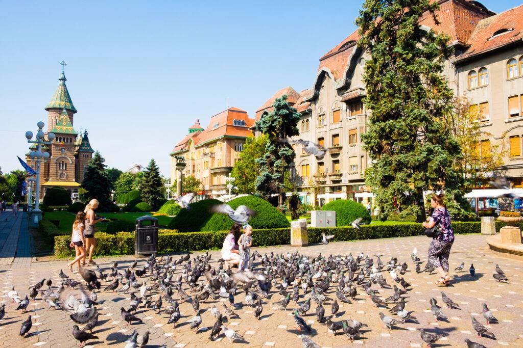 Piata Victoriei eller Segertorget i Timisoara.