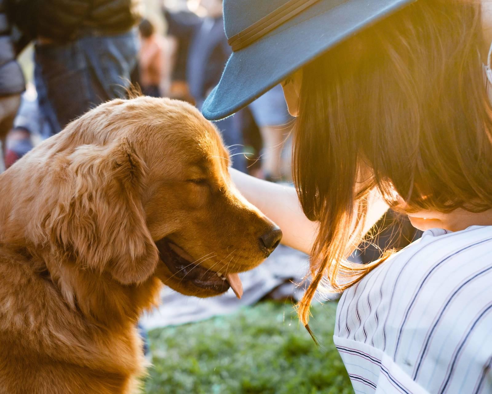 Kvinna och hund i motljus