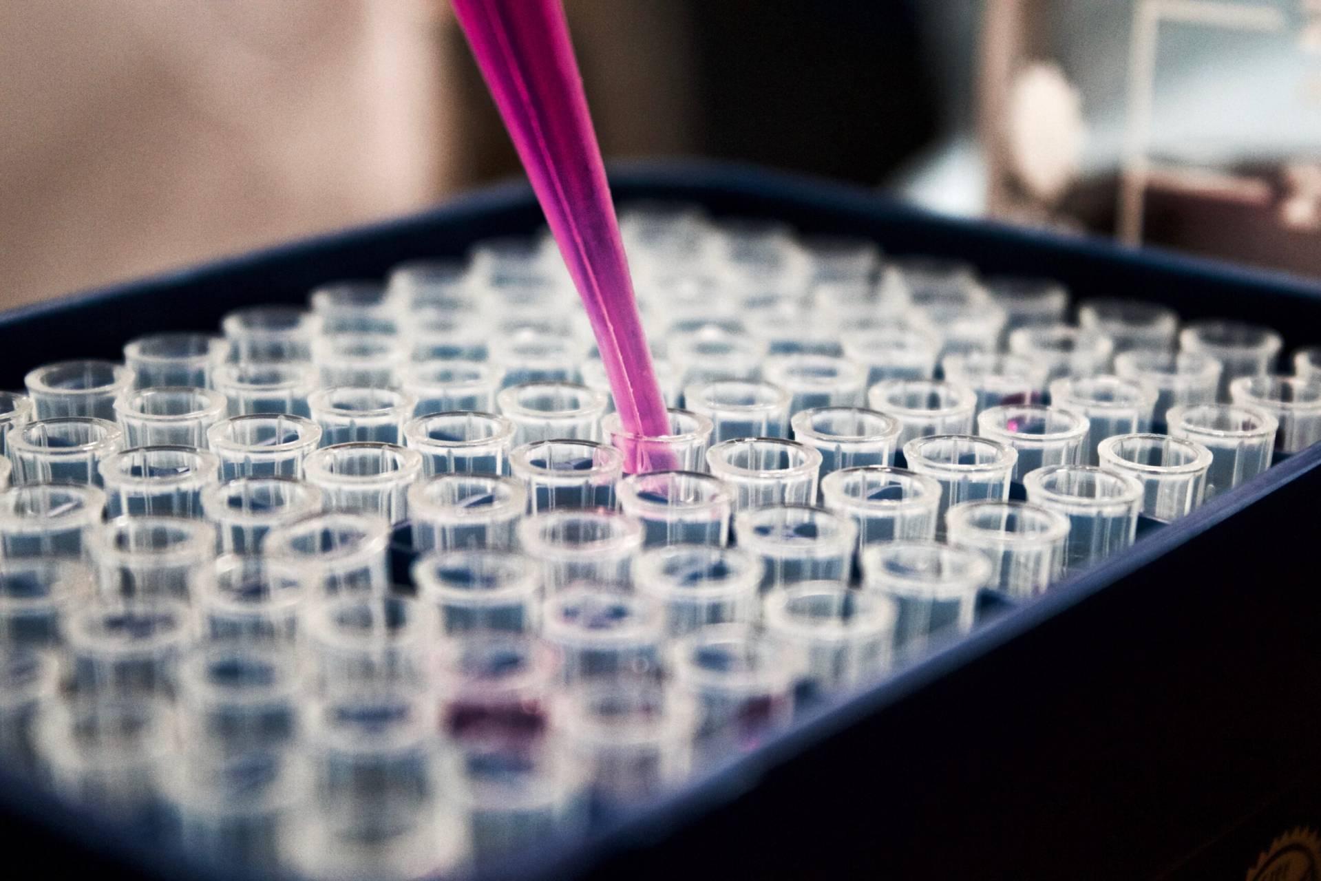 Forskarna hoppas kunna ersätta antibiotika med virus som dödar bakterier.
