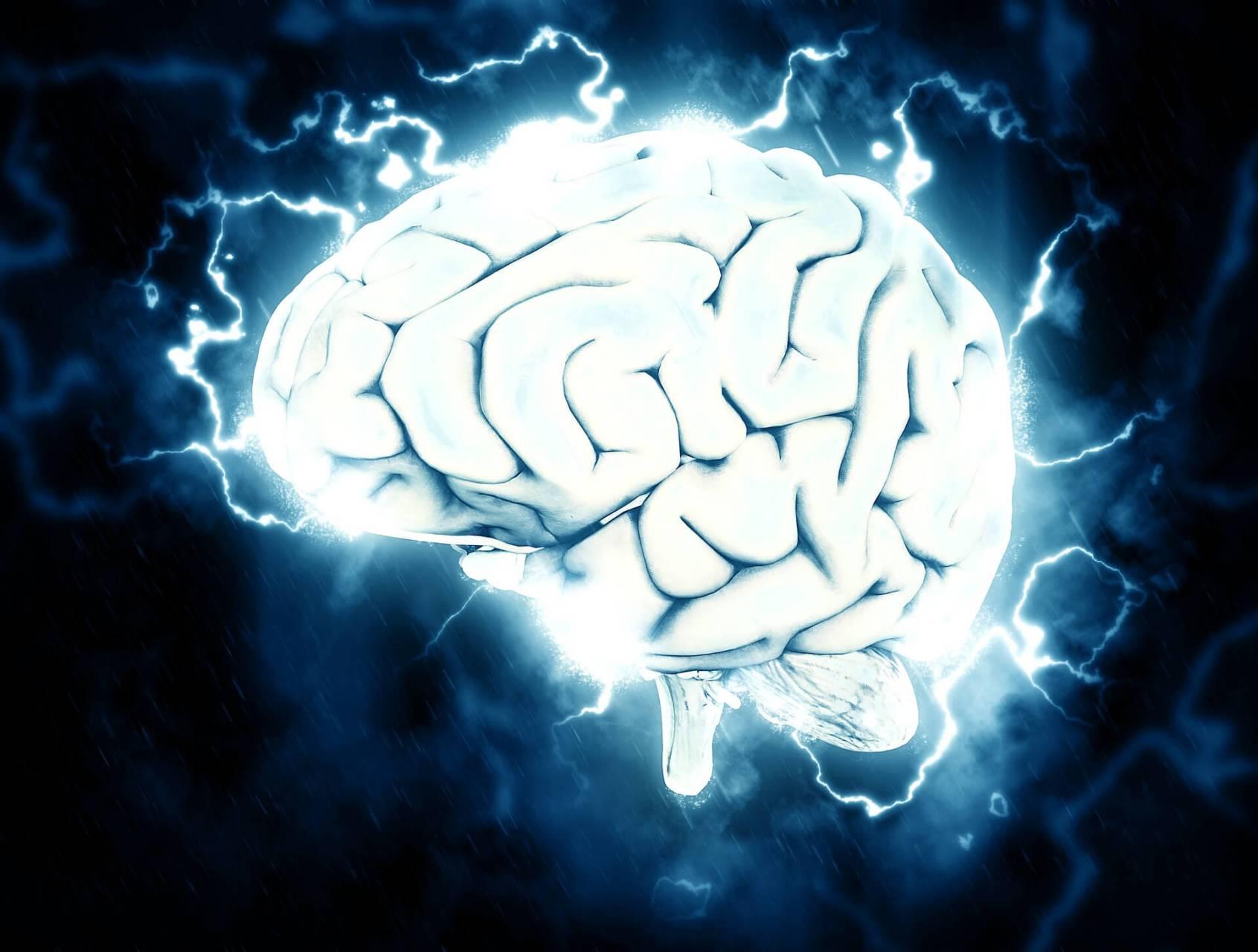 hjärna virus