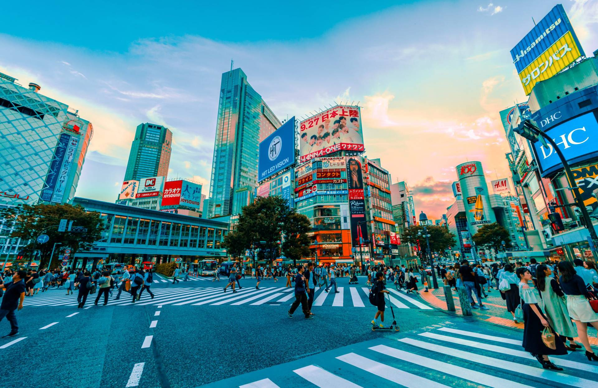Smaklökarnas Nirvana I Tokyo