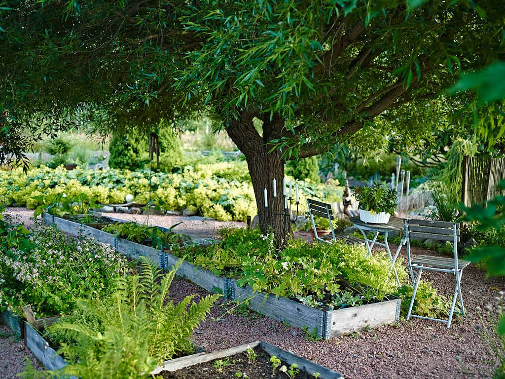 Sittplats under bollpilen med grönsaksodlingar till granne.